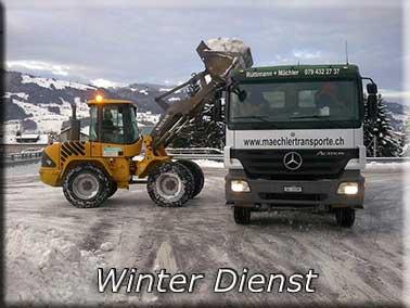 Winter Dienst
